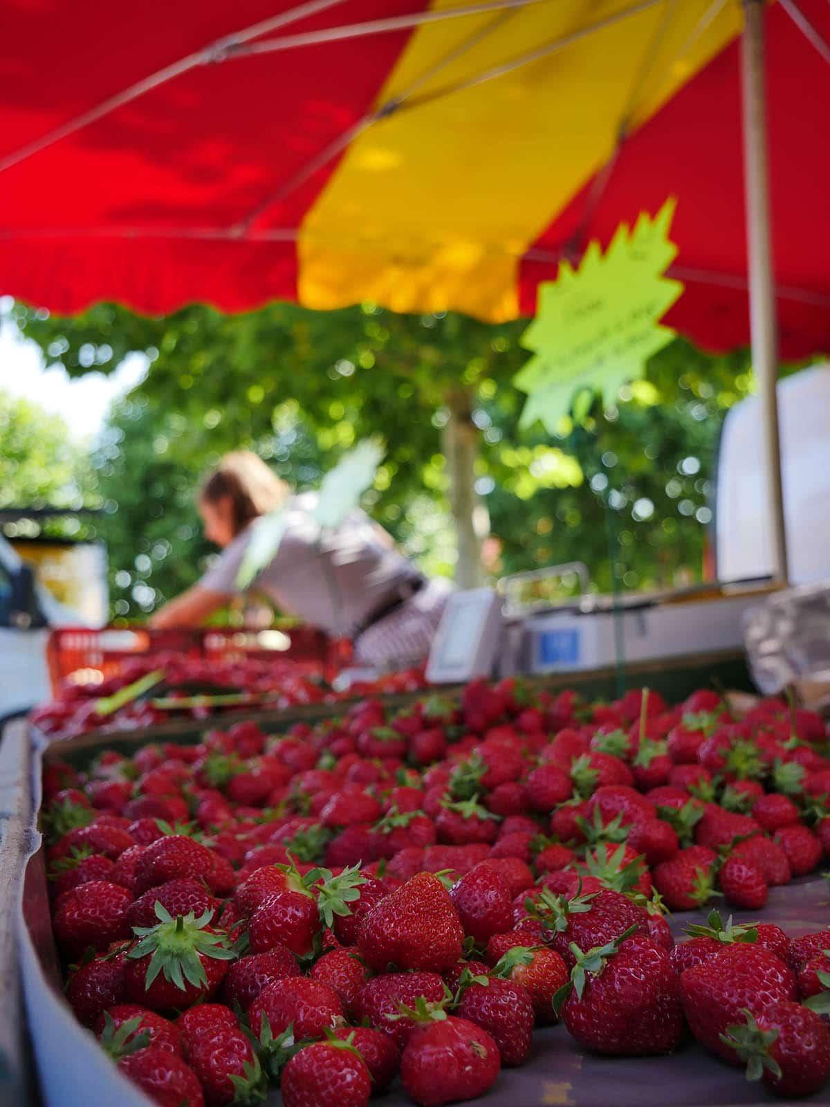 La-barre-de-monts-Wochenmärkte vendee